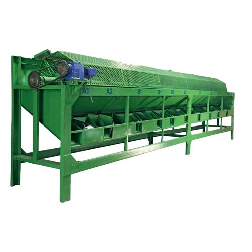 Raw cashew size sorting machine (3 METERS)